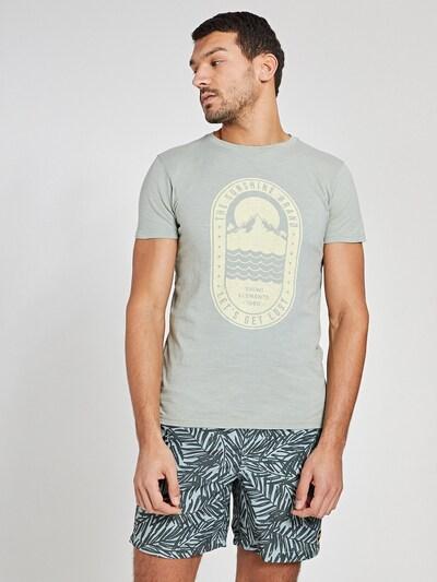 Shiwi Bluser & t-shirts i siv / lysegrøn: Frontvisning