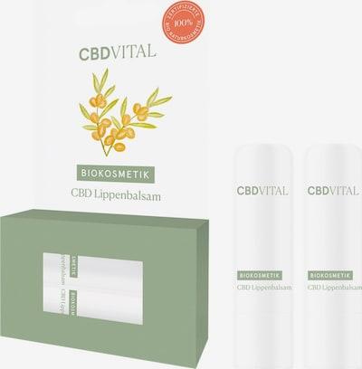 CBDVITAL Lippenbalsam 'CBD' in, Produktansicht