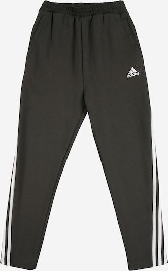 ADIDAS PERFORMANCE Sport-Hose in schwarzmeliert / weiß: Frontalansicht