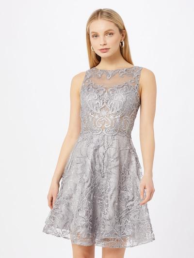 Laona Kleid in silber, Modelansicht