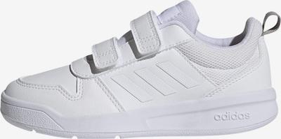 ADIDAS PERFORMANCE Sportschuh 'Tensaur' in weiß, Produktansicht
