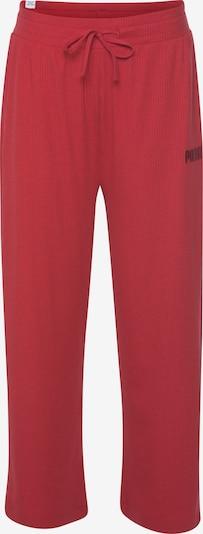 PUMA Hose in rot, Produktansicht