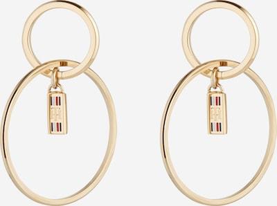 TOMMY HILFIGER Ohrringe in gold, Produktansicht