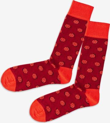 DillySocks Socken in Rot