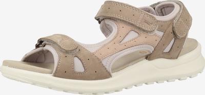 Legero Sandale in beige / greige / weiß, Produktansicht