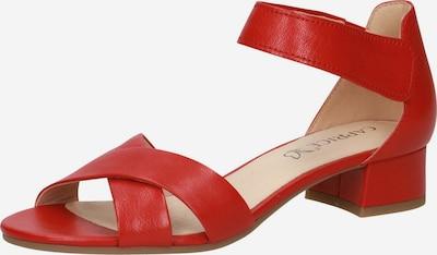 CAPRICE Sandalette in rot, Produktansicht