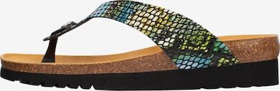 SCHOLL Zehentrenner 'KENNA' in grün, Produktansicht