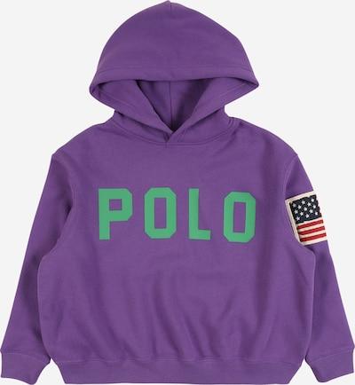 POLO RALPH LAUREN Sweatshirt in grün / lila, Produktansicht