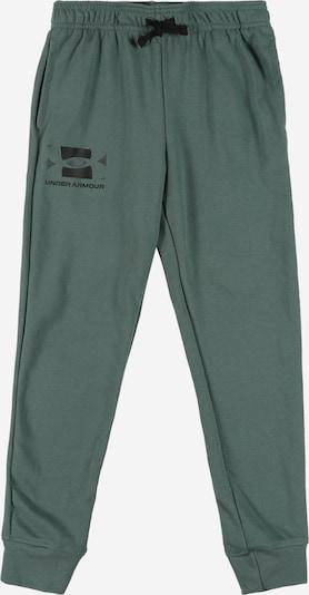 UNDER ARMOUR Sporta bikses smaragda, Preces skats