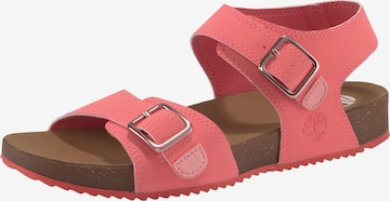 TIMBERLAND Sandale in Pink