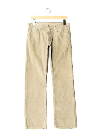 LEVI'S Pants in XL/31 in Greige, Item view