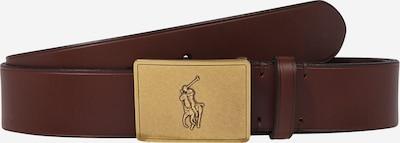 POLO RALPH LAUREN Pas | kostanj rjava barva, Prikaz izdelka