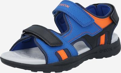 GEOX Sandale 'VANIETT' in royalblau / orange / schwarz, Produktansicht
