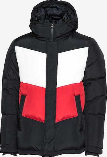 TOMMY HILFIGER Winter jacket in dark blue / red / white, Item view