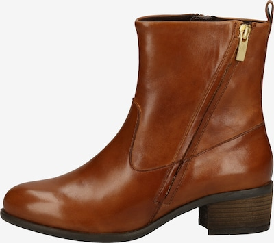 Steven New York Bottines en marron, Vue avec produit