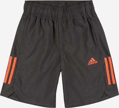 ADIDAS PERFORMANCE Sporta bikses tumši pelēks / oranžs, Preces skats