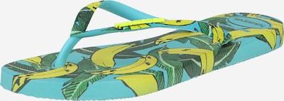 HAVAIANAS Teenslipper 'SUMMER' in de kleur Aqua / Geel / Groen, Productweergave