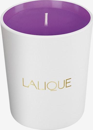 LALIQUE Kerze 'Electric Purple' in gold / lila / weiß, Produktansicht