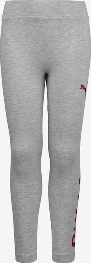 PUMA Leggings 'Alpha' in grau / rot, Produktansicht
