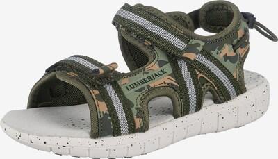 Lumberjack Sandalen in beige / grün / schwarz, Produktansicht