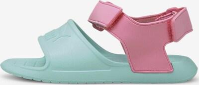 PUMA Sandale 'Divecat v2 Injex' in pastellblau / pastellpink, Produktansicht