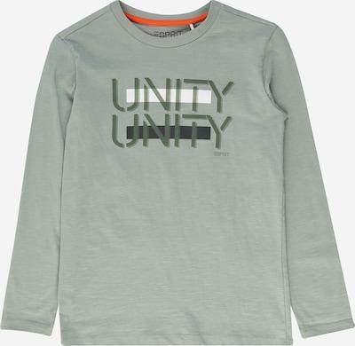 ESPRIT Paita värissä minttu / tummanvihreä / valkoinen, Tuotenäkymä