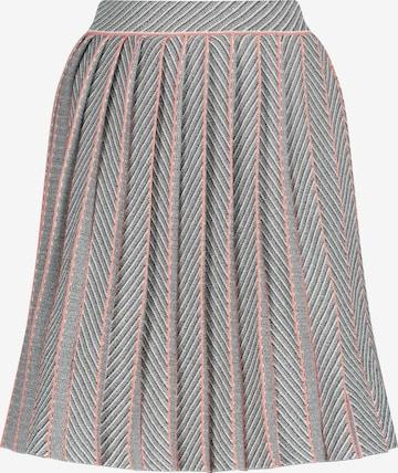Nicowa Skirt in Grey