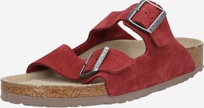 BIRKENSTOCK Klapki 'Arizona' w kolorze karminowo-czerwonym, Podgląd produktu