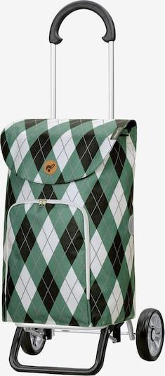 Andersen Shopper Scala Shopper Plus Arik Einkaufstrolley 57 cm in grün, Produktansicht