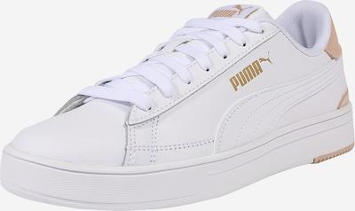PUMA Sneaker in gold / puder / weiß, Produktansicht