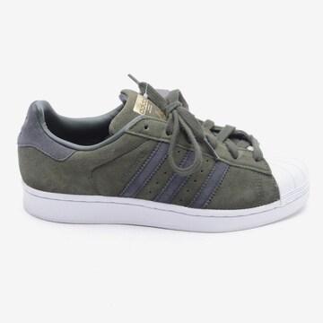 ADIDAS Turnschuhe / Sneaker in 38,5 in Grün