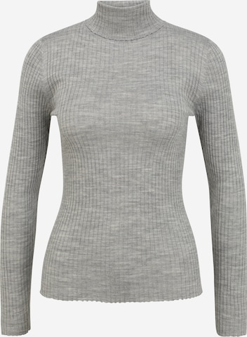Pull-over 'Costina' Selected Femme Petite en gris