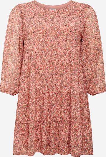 Z-One Kleid 'Agneta' in hellblau / rosé / rot, Produktansicht
