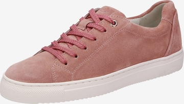 SIOUX Sneakers in Pink