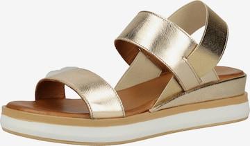 Sandales à lanières INUOVO en or