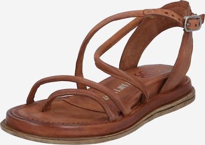 A.S.98 Sandal 'POLA FLASH' i konjak, Produktvy
