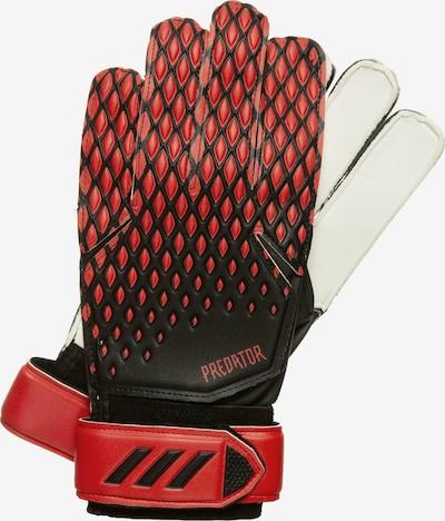 ADIDAS PERFORMANCE Torwarthandschuh in rot / schwarz, Produktansicht