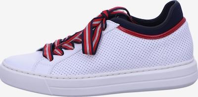 ARA Schuhe in weiß, Produktansicht