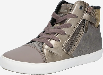 GEOX Kids Sneaker 'Gisli' in gold / taupe / graumeliert: Frontalansicht