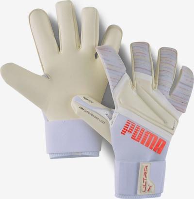 PUMA Sporthandschoenen in de kleur Lichtlila / Wit, Productweergave
