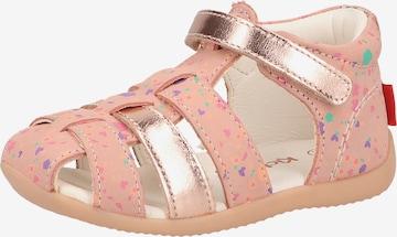 Chaussure basse KICKERS en rose