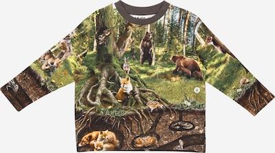 Molo Sportisks džemperis, krāsa - jauktu krāsu, Preces skats