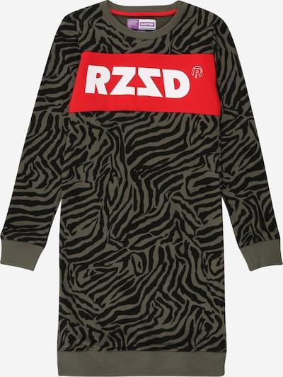 Suknelė 'Dublin' iš Raizzed , spalva - rusvai žalia / raudona / juoda / balta, Prekių apžvalga