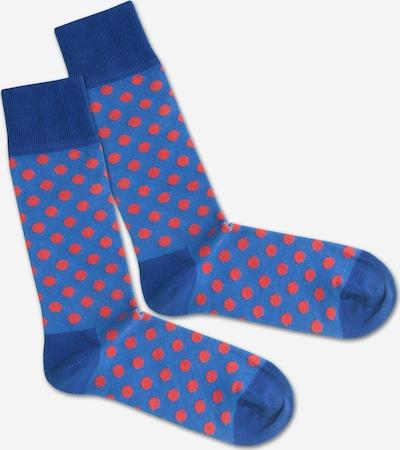 DillySocks Socken in blau / rot, Produktansicht