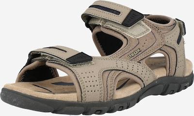 GEOX Sandały trekkingowe 'Strada' w kolorze ciemny beż / czarnym, Podgląd produktu