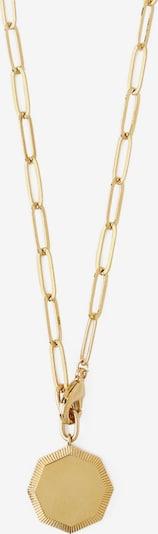 Orelia Kæde i guld, Produktvisning