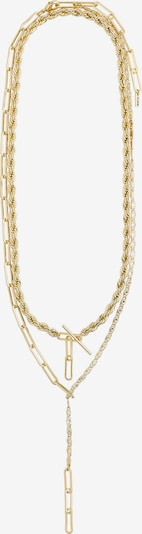 Pilgrim Chaîne 'Simplicity' en or, Vue avec produit