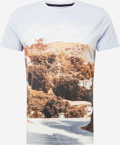 barna / fehér HOLLISTER Póló, Termék nézet