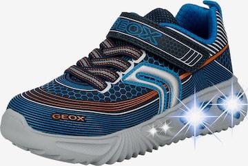 GEOX Schuh in Blau