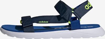 ADIDAS PERFORMANCE Sandales en bleu / vert fluo, Vue avec produit
